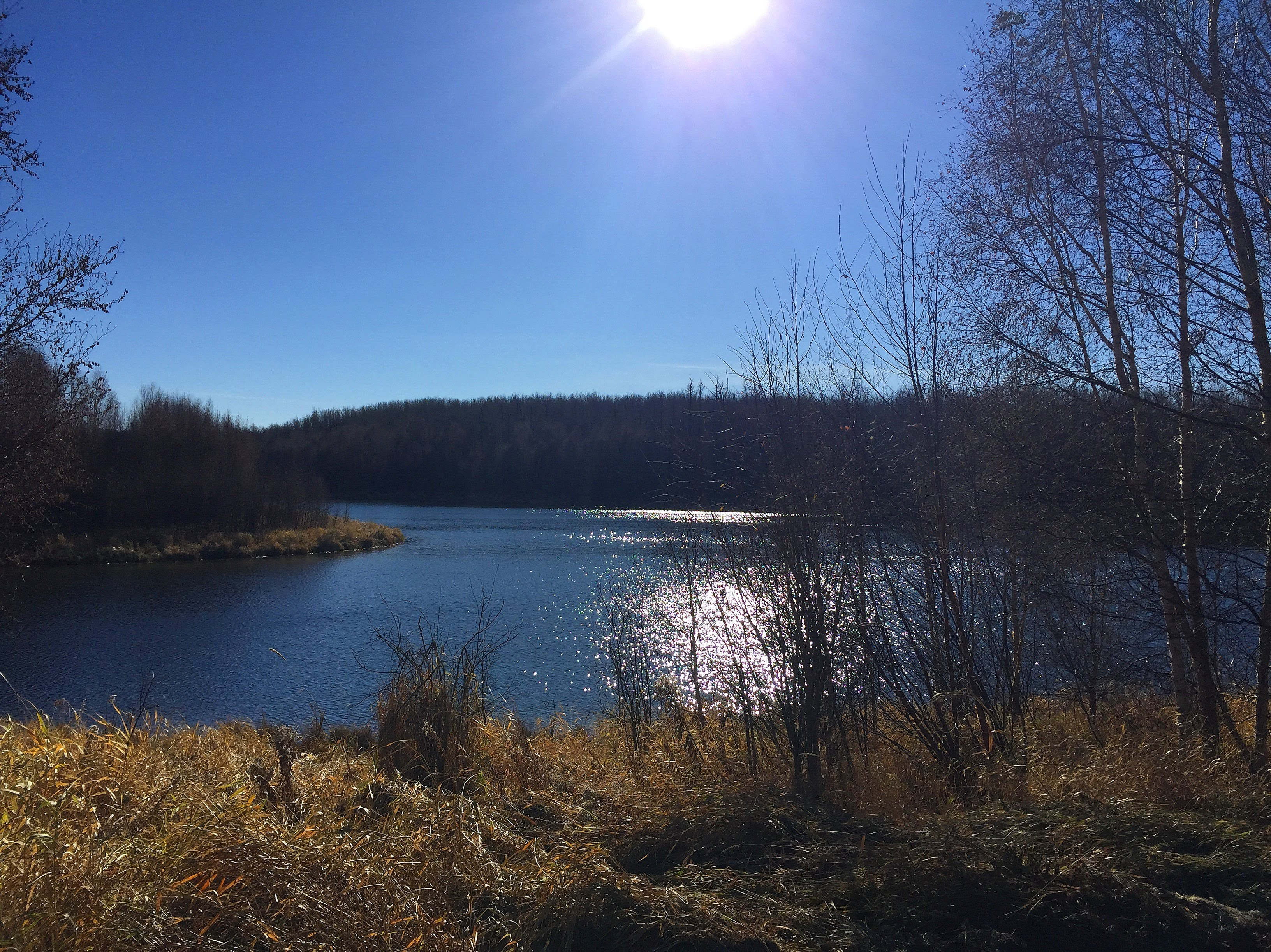 Hiking around #YEG and Area (Trails #6 – #10)